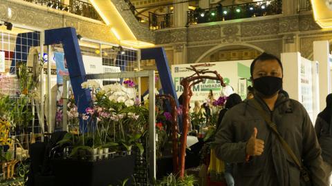Festival Kabupaten Sleman